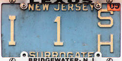 New Jersey County Government Surrogate License Plate