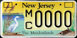 New Jersey Meadowlands License Plate
