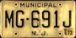 New Jersey Municipal Government License Plate