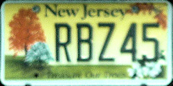New Jersey We Treasure Our Trees License Plate