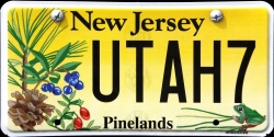 New Jersey Pinelands License Plate