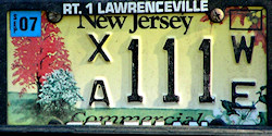 New Jersey We Treasure Our Trees Commercial License Plate