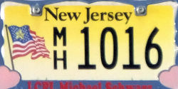 New Jersey Gold Star Family License Plate