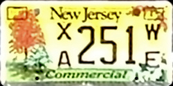New Jersey Treasure our Trees Commercial Truck License Plate